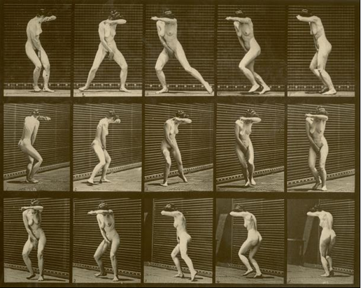 cronofotografie nudi Muybridge