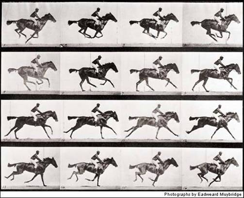 Galloping horse Muybridge
