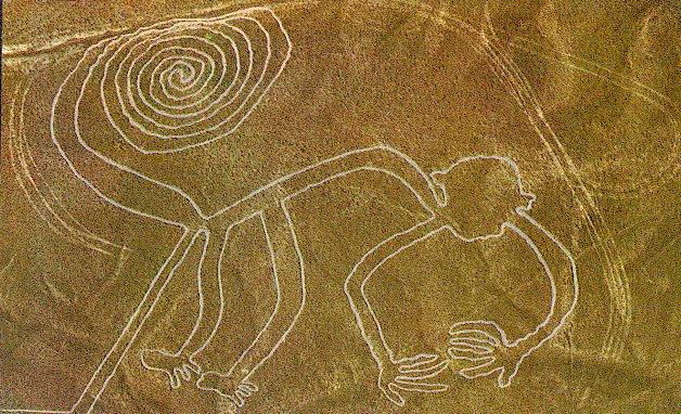 nazca-monkey Le linee di Nazca - Studio