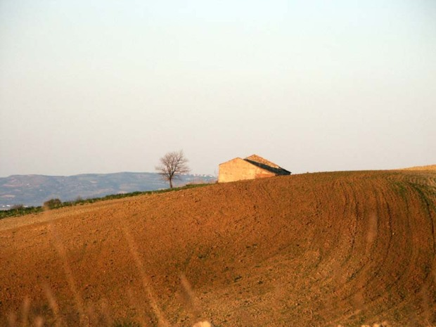 Casa sulla collina paesaggio estivo frinire di cicale pomeriggio riposo