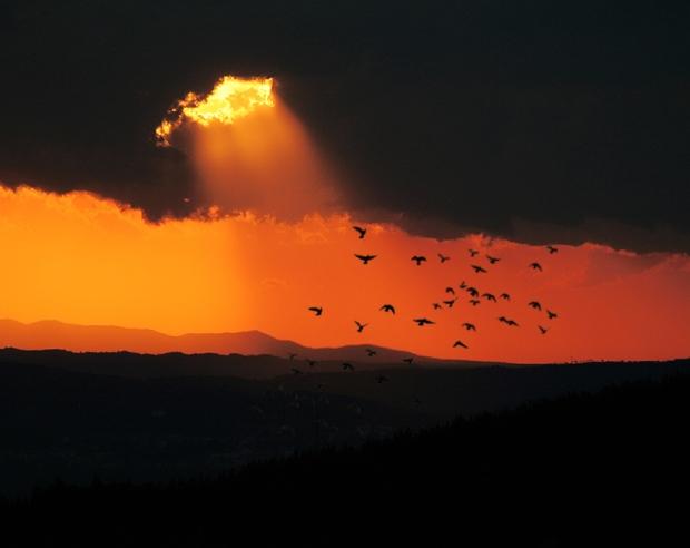 vita luce oltre trasformazione volo