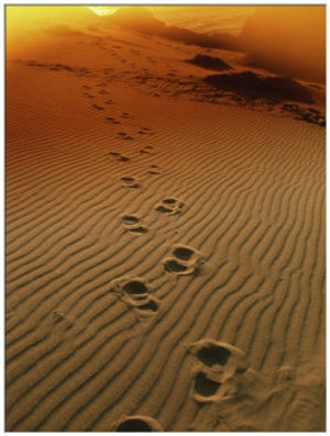 orme tramonto sabbia vita