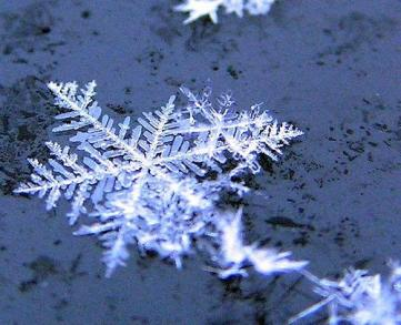 unicità fiocco neve