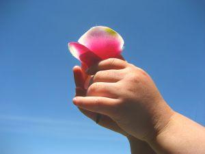 fiore bambino gioia